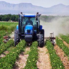 «Η παρασιτική οικονομία σκοτώνει την ελληνική αγροτική παραγωγή»