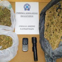 Χαλκιδική: Έκρυβε σε τροχόσπιτι σχεδόν μισό κιλό κάνναβη και taser (ΦΩΤΟ)