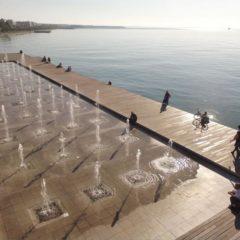 Θεσσαλονίκη: Τα δελφίνια «βγήκαν» στο Θερμαϊκό! (VIDEO)