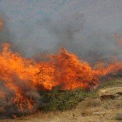 Αλεξανδρούπολη: Χωρίς ενεργό μέτωπο η πυρκαγιά στις Σάπες – Σε εξέλιξη η επιχείρηση κατάσβεσης