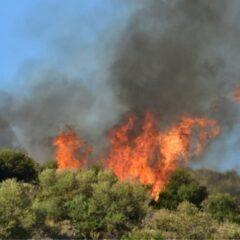 Θλίψη: 1 με 4 Αυγούστου κάηκε άνω του 50% της έκτασης που καίγεται σε μια αντιπυρική περίοδο