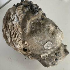 Ρωμαϊκή κεφαλή ανασύρθηκε από τη θάλασσα της Πρέβεζας – Από πεντελικό μάρμαρο με περίτεχνη κόμμωση [ΕΙΚΟΝΕΣ]